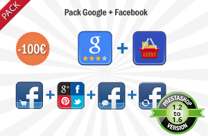 Pack Google + Facebook (6 modules)
